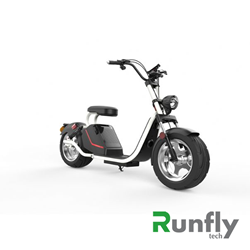 RUNSCOOTERS EEC COCO HARLEY CITYCOCOHLS26-1