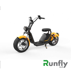 RUNSCOOTERS EEC COCO HARLEY CITYCOCOHLS6-3