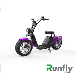 RUNSCOOTERS EEC COCO HARLEY CITYCOCOHLS26-5