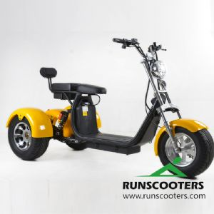 RUNSCOOTERS 3 WHEELS harley citycoco scooters motorcycleHLS04-D